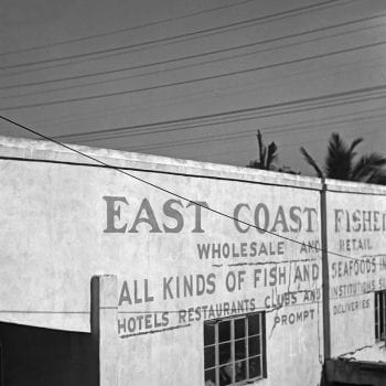East Coast Fisheries, Miami