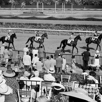 Starting line at the Hialeah Racetrack